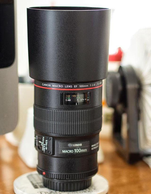 最好最清晰的微距镜头 佳能EF100/2.8