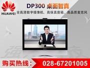 华为 DP300