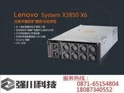 联想 System x3850 X5(7145I19)