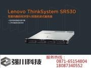 联想 ThinkSystem SR530(Xeon 银牌4110/16GB/300GB)
