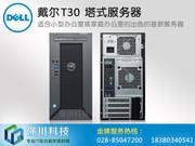 成都戴尔(DELL) T30 塔式商用服务器主机 高性价比机型 财务数据存储erp文件备份服务器