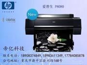 爱普生 P8080