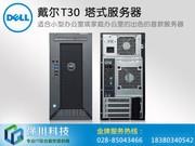 戴尔 PowerEdge T30微塔式服务器(Z421012CN)