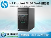 HP ProLiant ML30 Gen9(872658-AA1)