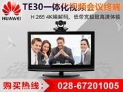 华为 TE30-C-720P