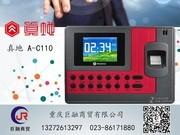 真地 A-C110