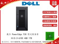 戴尔 PowerEdge T30 塔式服务器(酷睿i3-6100/4GB/1TB)