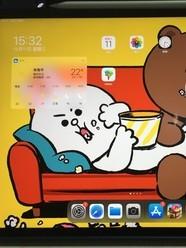 12.9英寸的iPad pro和学习app