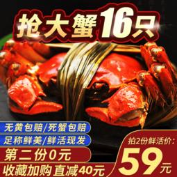 【直降40吃过瘾】苏津六月黄大闸蟹 两份16只