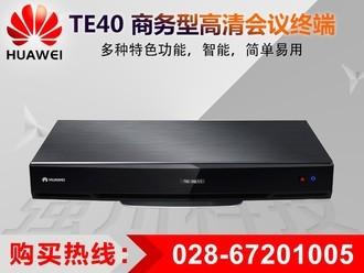 华为 TE40-1080/60