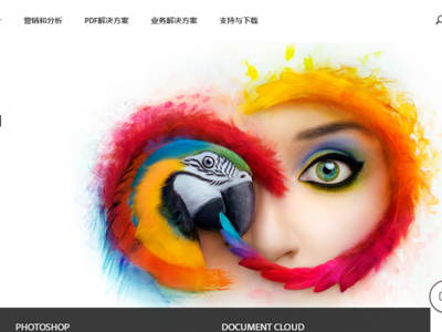 Adobe Acrobat  CC 标准版