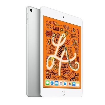 苹果 新款iPad mini 2019(64GB/WLAN版)