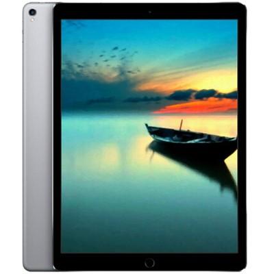 【顺丰包邮  送贴膜】苹果Apple iPad Pro 12.9 英寸128 4G商务出行版