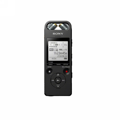 索尼 ICD-SX2000