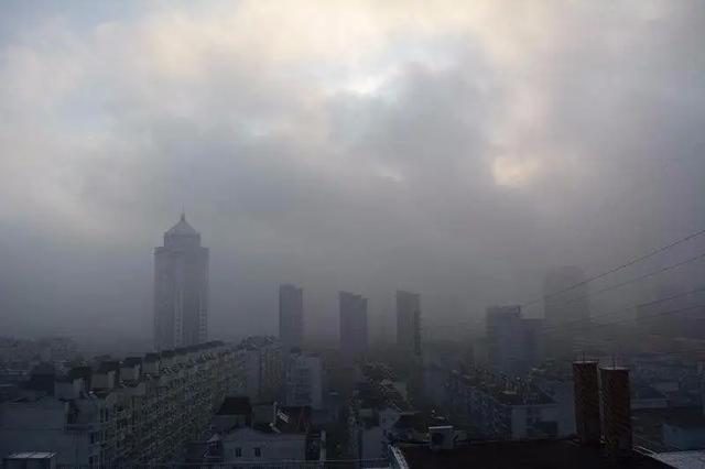 不怕空气污染,有它能让你在优良的空气环境内生活
