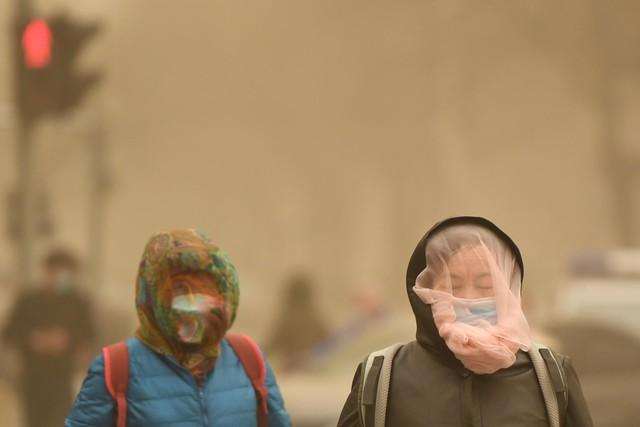 信山IA1019S:创新净化技术,家庭空气质量卫士