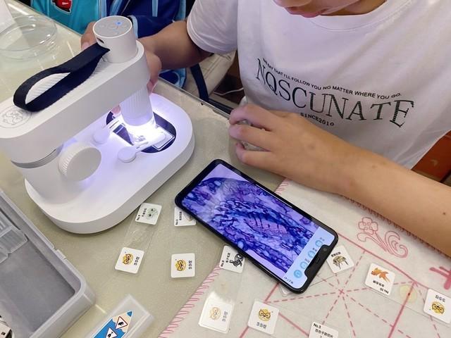 孩子的第一台显微镜,打开微观世界的大门!微观世界从此揭秘